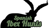 Spanish Ibex Hunts