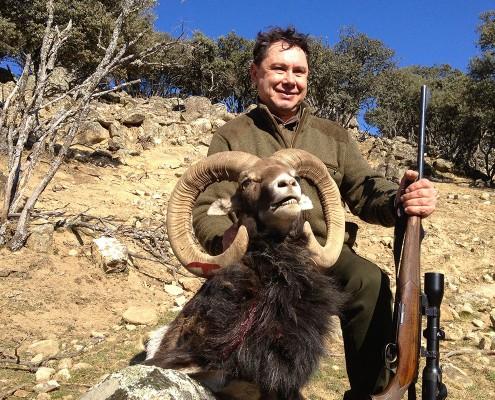 mouflon06