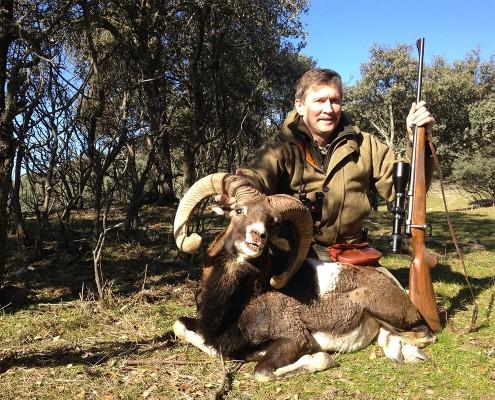 mouflon08